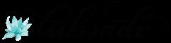 New+Dubsado+Logo